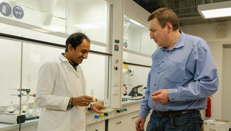 Биоразлагаемые пленки на основе водорослей создала российско-индийская группа ученых